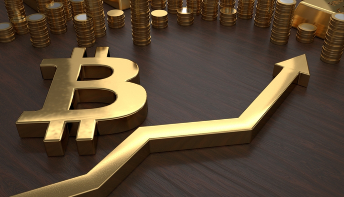 bitcoin-alta-pdb-1 (1)